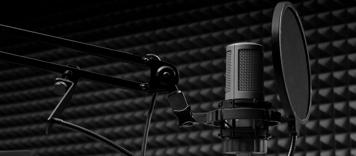professional voice services, Voice Recording, Voice Recordings, voice prompt, IVR voices, messages on hold, voice over video